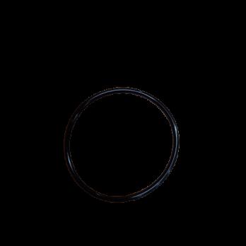 Кольцо уплотнительное 10SL  Гейзер 23076