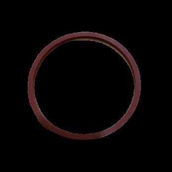 Кольцо уплотнительное 10SL  Гейзер ХИТ для горячей воды